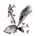 Papillonage_3
