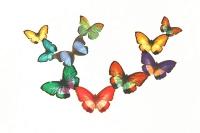 Papillonnage_1