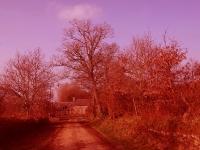 La ferme rouge_1